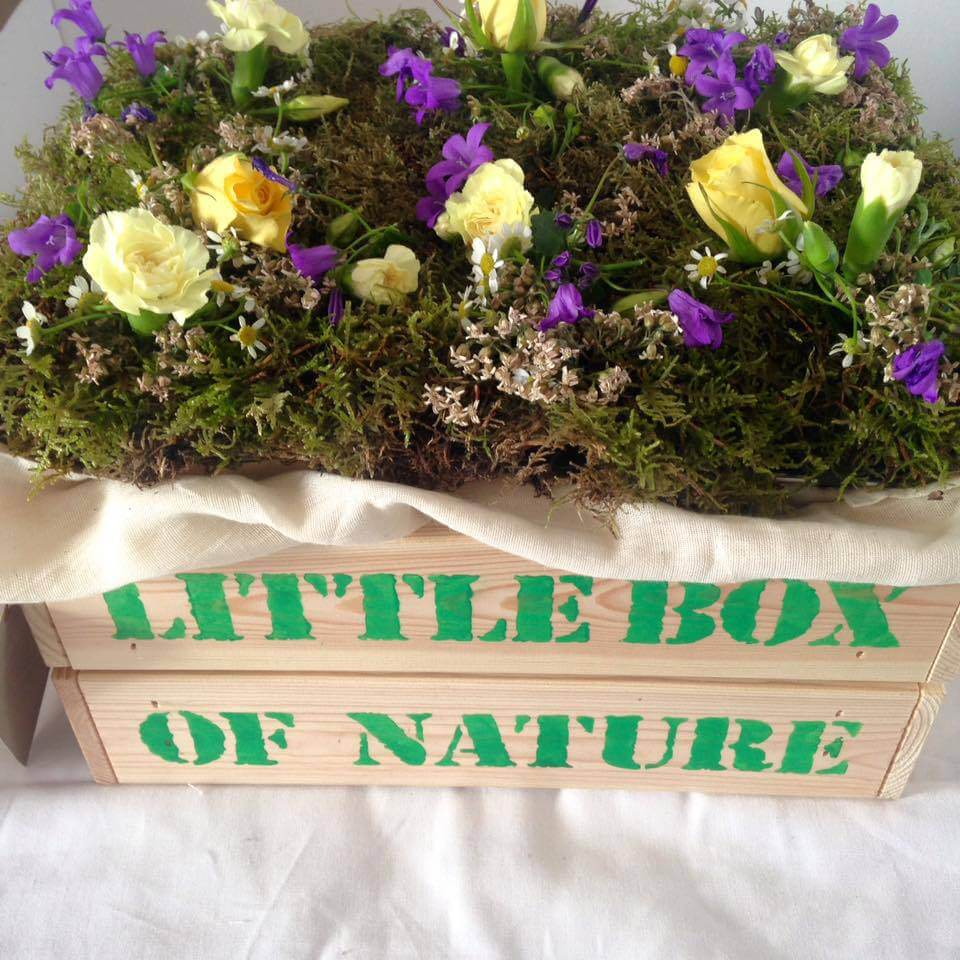huggies wipes little box of nature