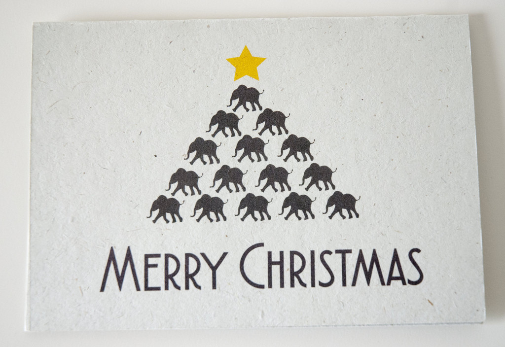 Eco-Friendly Christmas Cards - Hi Baby