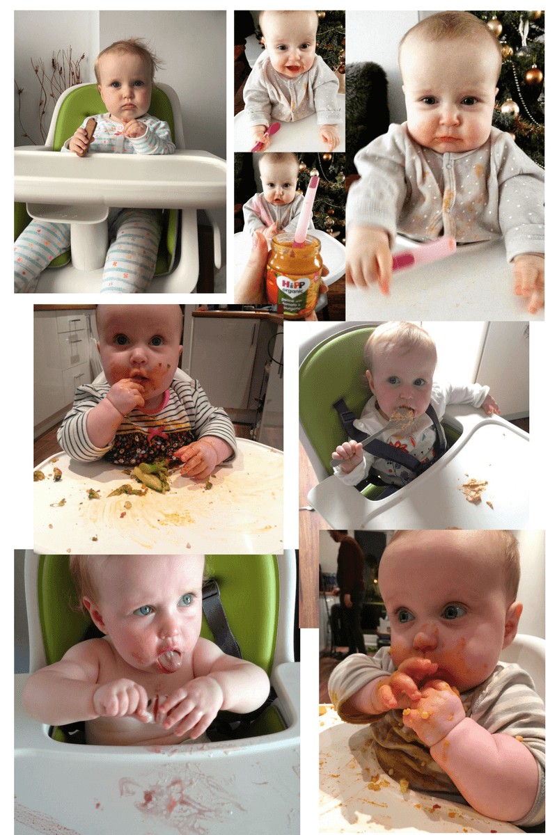 weaning collage