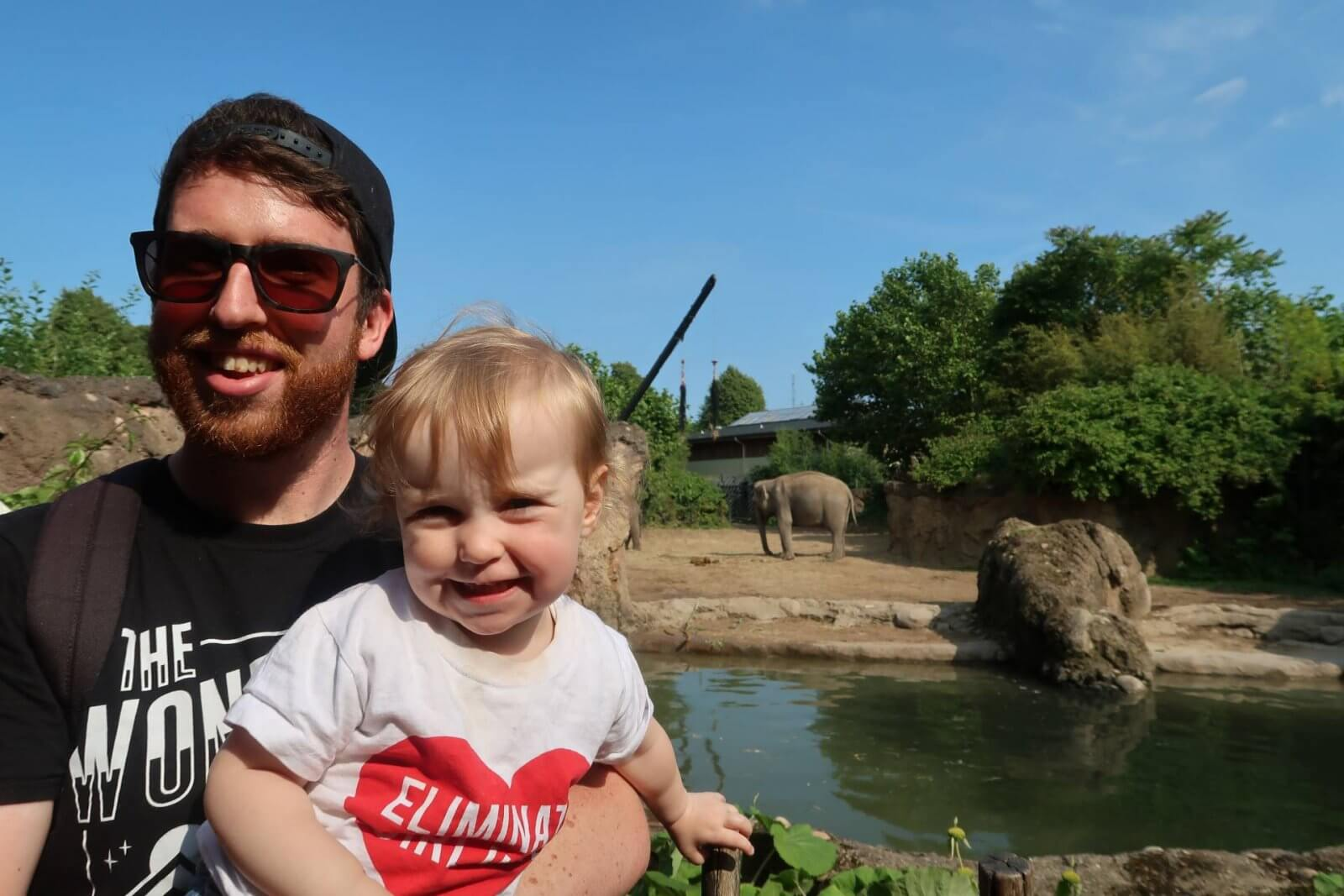 collection avoid for days out at attractions dublin zoo